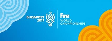 Hivatalos személyszállító partner FINA 2017 Budapest.